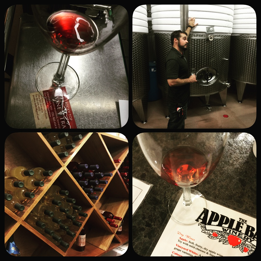 Apple Barn Winery - things to do in Sevierville