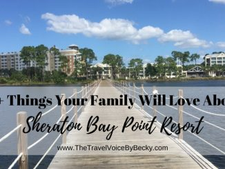 10 Things Your Family Will Love About Sheraton Bay Point Resort